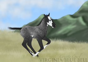 Virginia Blue Bell by Huntress614