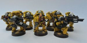 Imperial Fist Sternguard 3 by Ninestar
