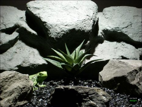 Reptile Habitat Plants | Aloe by ronbeckdesigns