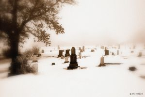 Forgotten by Orcadus