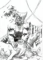 Wolverine commission by Lun-K