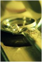 My Engagement Ring III by Olivares