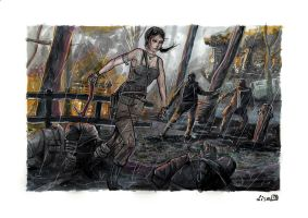 Tomb raider 2013 by didism