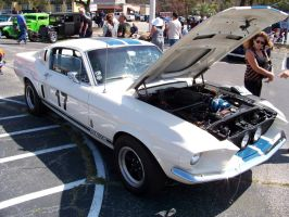 '67 GT350 from N.Y. by DetroitDemigod