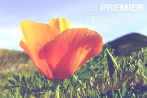 25 Premier Photo Actions by frozencolor