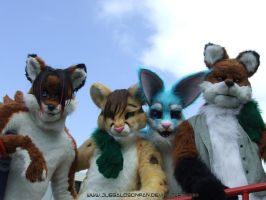 Vixen Made Fursuits Group 2 by Vixen8387