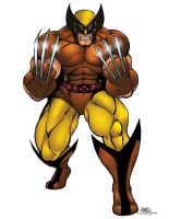 Wolverine in color by seanforney