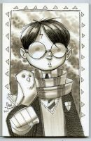 Harry Potter 02 by ChadTHX1138