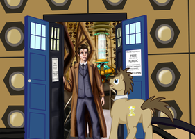 MLPxDoctor Who: the Two Doctors by StormCrow-42
