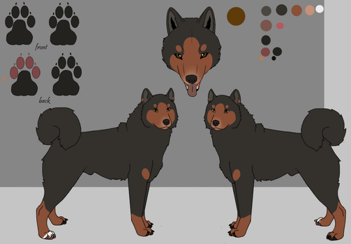 Dog Ref Sheets Male-WillowWinters by WillowWinters