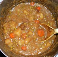 My Homemade Beef Stew by Wilcox660