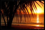 Tropical Sunset 2 by Ildefonse