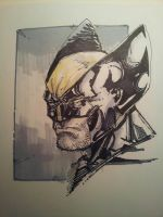 15 minute Wolverine Marker Sketch. by dreamflux1