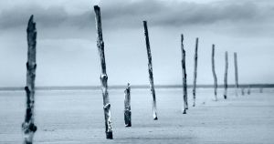 Holy Island Posts by hold-steady