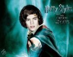 Harry styles Potter by DirectionForLyfe