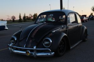 Lost Beetle by KyleAndTheClassics