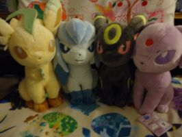 My newest vees by kiraradaisuki