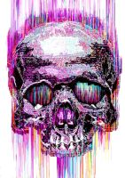 Glitch Skull (The Circuits Are Bleeding) by ECHOOHCE