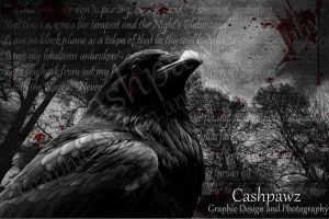 The Raven by Cashpawz