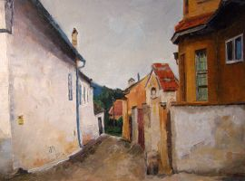 Street in Sighisoara by prettywell
