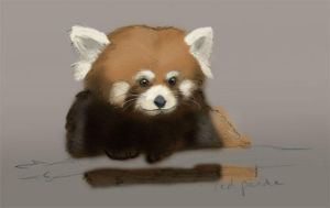 red panda - painting by EmeraldEmpress