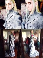 Thranduil Make-Up Test 2 by Xelhestiel