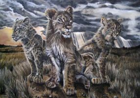 Little Big Cats of Africa by Katie-Z