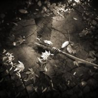 The last leaves by etchepare