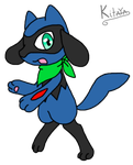 Riolu Kat by Night-Chimeras-Cry