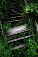 Stairs to ivy hill by FotoHEathmo