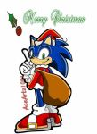 Sonic Merry Christmas and a Happy New Year!!! by AceArtz1001