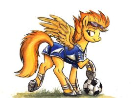 Canterlot High - The Soccer Captain by sophiecabra