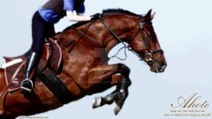 Ahote Jumping Manip by Boggeyboo