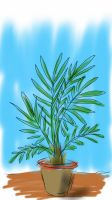 my green plant by kamal124