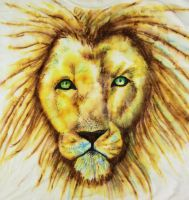 Sharpie Painting Lion by ScarlettRoyale