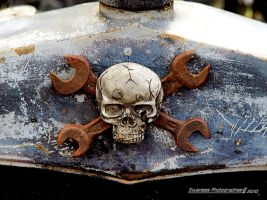 Not So Jolly Roger by Swanee3