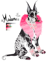 Madame2014Ref by CHANELGoo