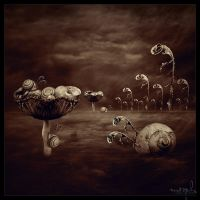 Silence , Night and Dreams II by the-surreal-arts