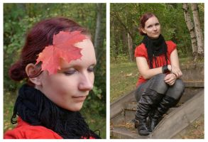 Fall colours by Wolverica