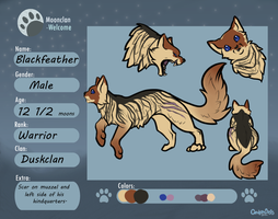 Blackfeather ref by Demonic-creature