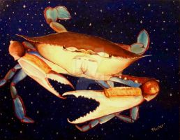 Crab in Space by scott-plaster