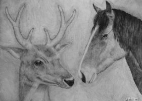 A deer and a horse by SolnceDei