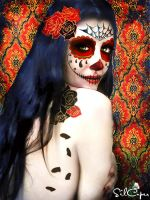 Day of the dead I by silcuper