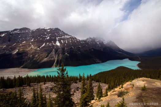 Peyto Lake by omagnas