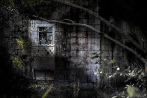 Dilapidated I by RSMLittrell