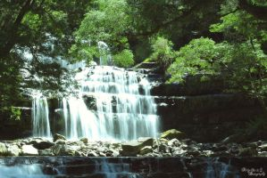 Liffey Falls by FortySixand2Photos