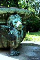 Lion on the Fountain by peterjdejesus