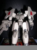 Gundam Model Pics 5 of 35 by nuinyulmaion