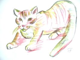 Cat (Watercolors) by Lunell