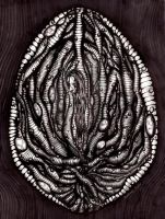 'Solitude Cocoon' by OverlordMortiroth